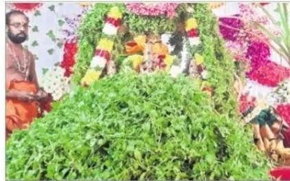 వైభవంగా సాలిగ్రామ తులసీ కళ్యాణం