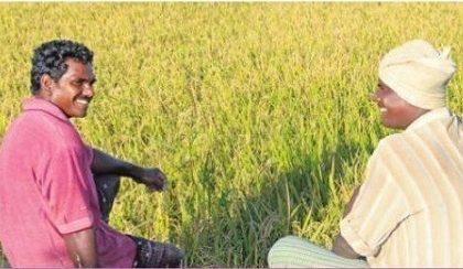 రైతు భరోసాకు సర్వం సిద్ధం